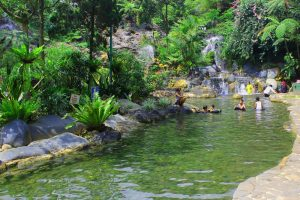 Unique Bandung Forest Resorts & Hotels for Nature Lovers