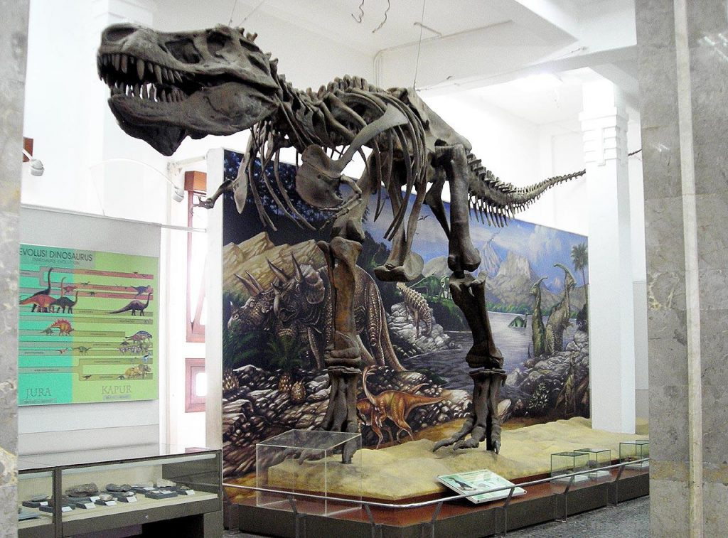 things to do in bandung geological museum